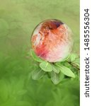 Red Crystal Ball On A Branch O...