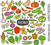 vegetables doodle drawing... | Shutterstock .eps vector #1485783281