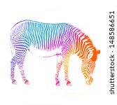 A Standing African Zebra...