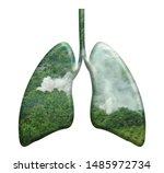 Deforestation Lungs Design...
