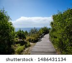 Bright sunny summer beach day with vivid blue ocean in the background and wooden boardwalk walking track in the foreground at Point Arkwright, Sunshine Coast, Queensland, Australia