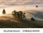 Summer Foggy Sunrise In The...