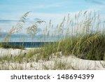 Sea Oats And Native Dune...