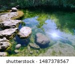 Wild Creek With Clear Water An...