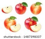 Apple Set Watercolor...