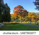 New England Fall Foliage. The...