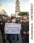 Small photo of Sucre, Bolivia - August 2019: Protest to demand international aid for forest fires in the Bolivian amazon and repeal the Presidential Decree 3973 permitting forest burning and clearing