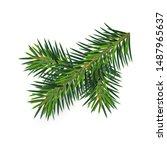 christmas green lush spruce...   Shutterstock .eps vector #1487965637