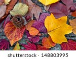 Abstract Background Of Autumn...