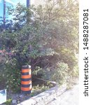 Small photo of a misplaced traffic cone making an escape