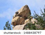 Stock photo sasquatch rock on the jicarilla apache reservation in dulce new mexico a rock formation with the 1488438797