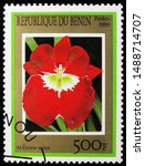 Small photo of MOSCOW, RUSSIA - AUGUST 8, 2019: Postage stamp printed in Benin shows Miltoniopsis Minx (syn. Miltonia Minx), Orchids serie, circa 1999