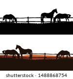 Herd Of Domestic Horses Grazing ...