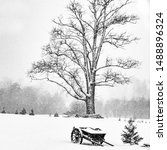 Winter  Tribute To Ansel Adams...