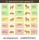 cat and dog body language... | Shutterstock .eps vector #1489055501