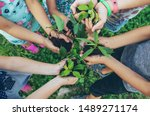 children plant plants together... | Shutterstock . vector #1489271174
