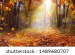 Beautiful Autumn Landscape With ...
