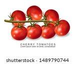 cherry tomatoes vector... | Shutterstock .eps vector #1489790744
