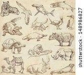animals around the world ... | Shutterstock . vector #148986827