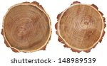 Cross Section Of Tree Trunk...