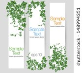 vector ivy leaf decorated... | Shutterstock .eps vector #148994351
