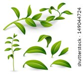 branch of a plant with green...   Shutterstock .eps vector #149044724