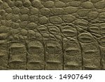 natural crocodile leather... | Shutterstock . vector #14907649