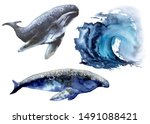 set with sea whale. isolated on ...   Shutterstock . vector #1491088421