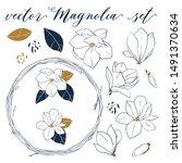 Vector Magnolia Set. Hand Draw...