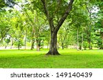 green trees in park | Shutterstock . vector #149140439