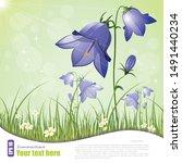 Campanula  Flower Bell  Raster...