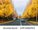 dec 5  2018 tokyo  japan  ... | Shutterstock . vector #1491486941