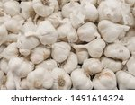 Many Garlics In Bucket For Sale