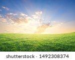 Summer Sunset Over Green Grass...
