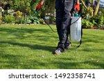 Spraying Pesticide With...