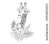 giraffe cub with flowers hand...   Shutterstock .eps vector #1492401011