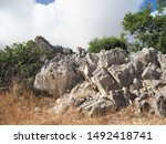 corfu  greece  landscape with... | Shutterstock . vector #1492418741