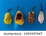 Small photo of ripe pear and listless pears