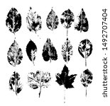 a set of silhouettes of tree... | Shutterstock .eps vector #1492707404