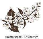 jasmin branch | Shutterstock .eps vector #14928409
