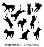 Stock vector a set of pet cat silhouettes including the cat playing jumping and walking 149304041