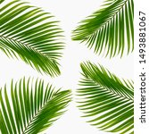 textured leaves abstract green... | Shutterstock . vector #1493881067