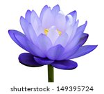 Blue Water Lily Isolate On...