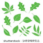 leaves icon vector. various... | Shutterstock .eps vector #1493989511