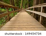 Wooden Path In An Old Growth...