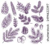 sketch xmas branch set. retro... | Shutterstock .eps vector #1494622397