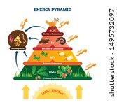energy pyramid vector... | Shutterstock .eps vector #1495732097