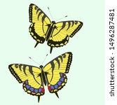 Swallowtail Butterflies...
