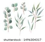 watercolor set of isolated... | Shutterstock . vector #1496304317