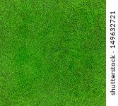 idyllic  seamless grass texture | Shutterstock . vector #149632721